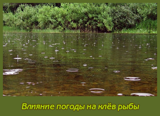самая оптимальная погода для рыбалки