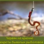 Червяк на крючке. Секреты бывалых рыболовов