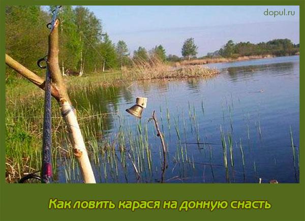 рыбалка летом на донную удочку