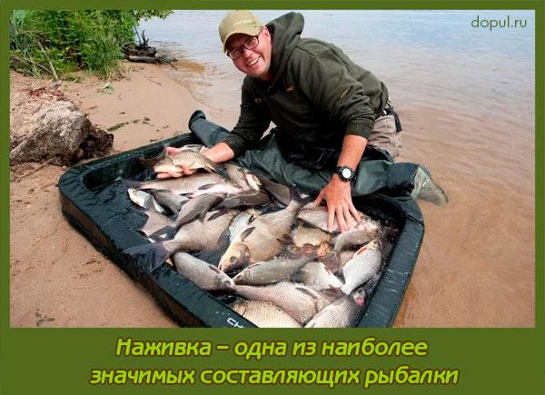 корты на рыбалке