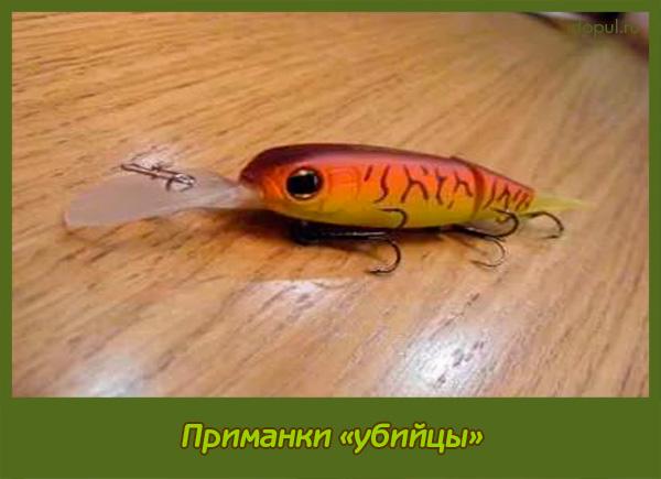 наживки для рыбалки болтушка