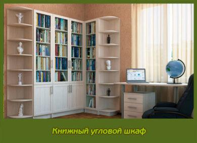 Книжный угловой шкаф