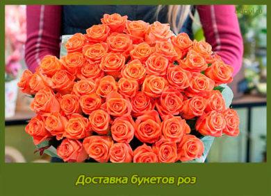 Доставка букетов роз